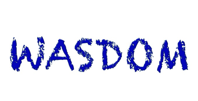 wasdom